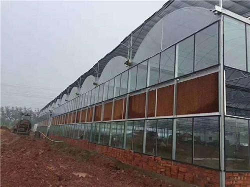 河南玻璃智能温室连栋大棚
