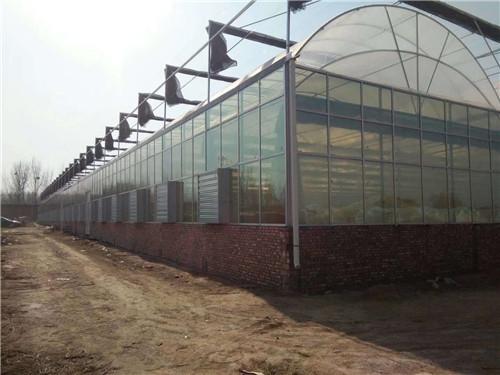 河南玻璃智能温室连栋大棚建设