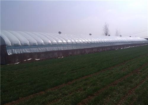 养殖大棚设计