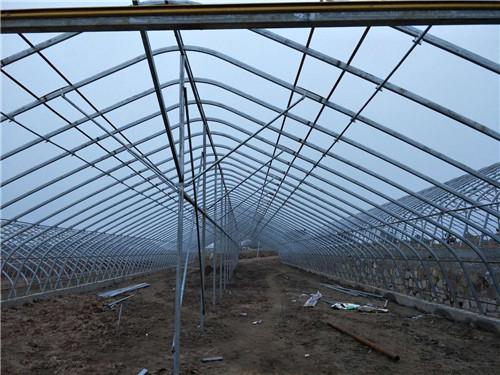 河南温室大棚建设案例