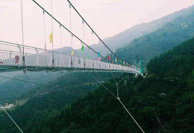 河南吊桥安装