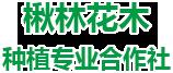 淮阳县楸林花木种植专业合作社
