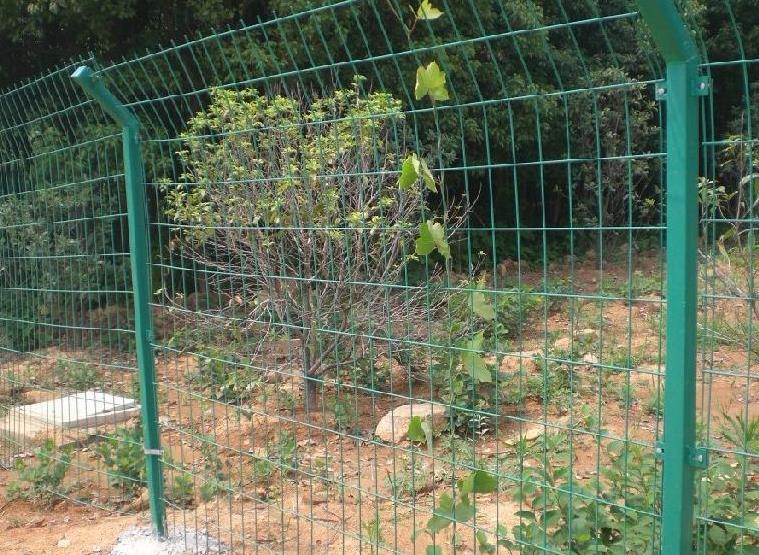 陕西护栏网厂家——双边丝护栏网
