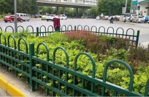陕西绿化护栏网