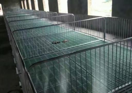 四川养猪设备—保育床