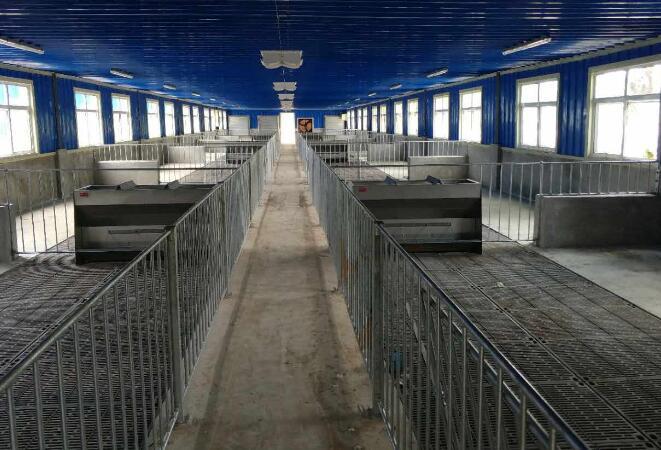 成都养猪设备合作企业