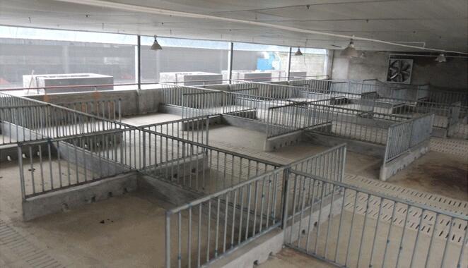 四川攀枝花成套养猪设备