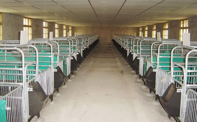 四川乐山集团成套养猪设备