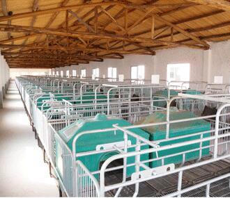 四川南充农牧企业成套养猪设备