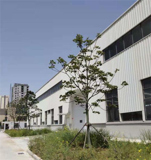 中东泓森人工智能科技(南阳)有限公司-技术研发部门