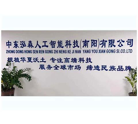 中东泓森人工智能科技(南阳)有限公司