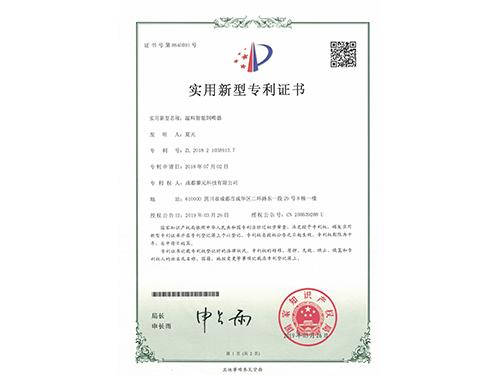 实用新型专项证书(一)