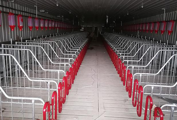 四川自动饲喂机是否适合目前养猪场的养殖模式?