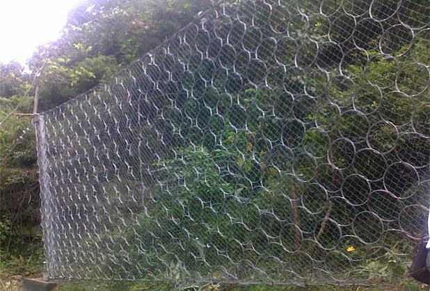 成都防护网批发-被动网