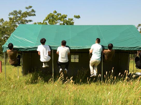 帐篷在各个领域的应用频率在如何变化
