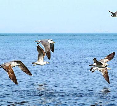 五一畅游哈仙岛