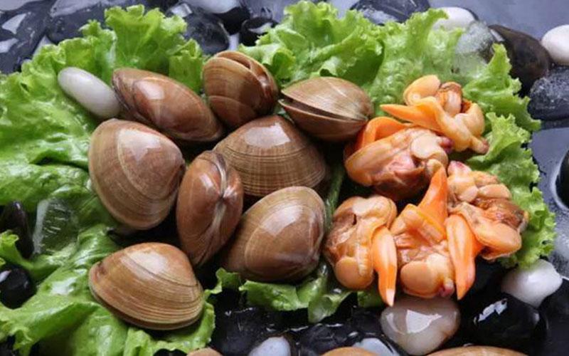 哈仙岛贝类海鲜