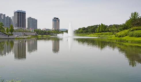 碧桂园—梦里巴国