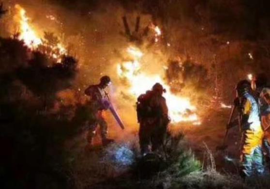青岛西海岸新区小珠山火灾原因初步查明,该案正在进一步调查中