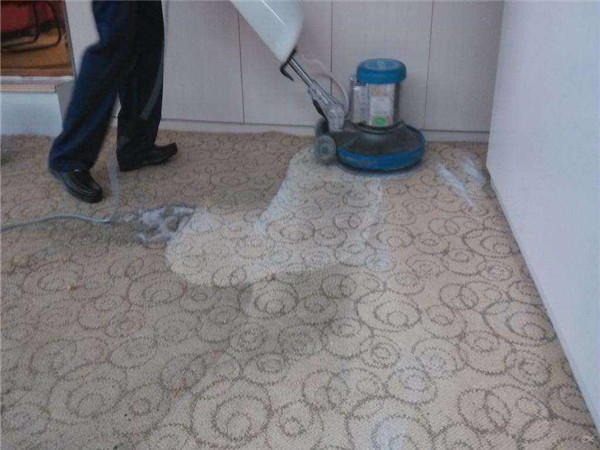 呼市地毯清洗 地毯清洁