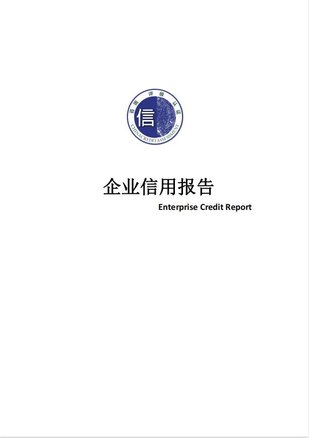 企业信用报告