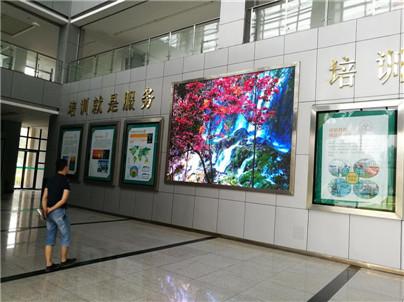 四川学校教育LED显示屏
