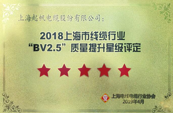 """""""BV2.5""""质量提升星级评定"""