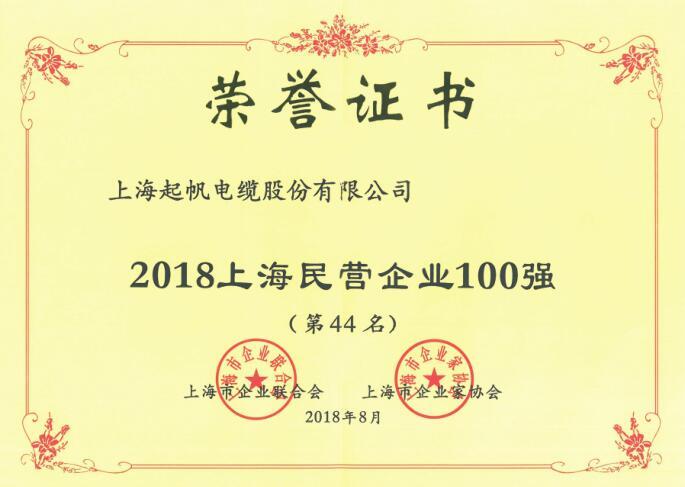上海民营企业100强