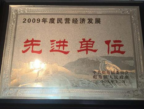2009年度民营经济发展**单位