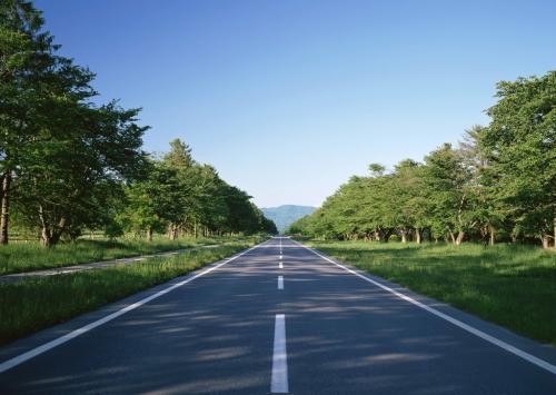 请问,成都沥青混凝土路面与水泥路面相比较各有什么优缺点?