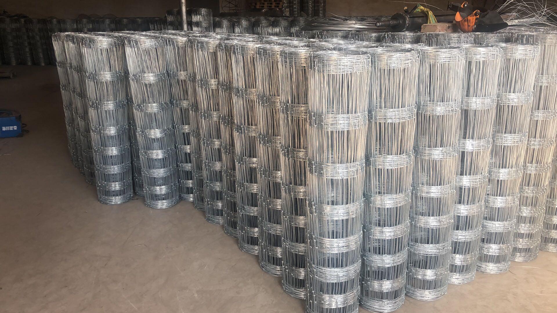 铁丝网大量批发