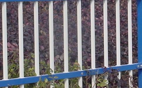 爱护草坪,从护栏的安置做起怎么样?