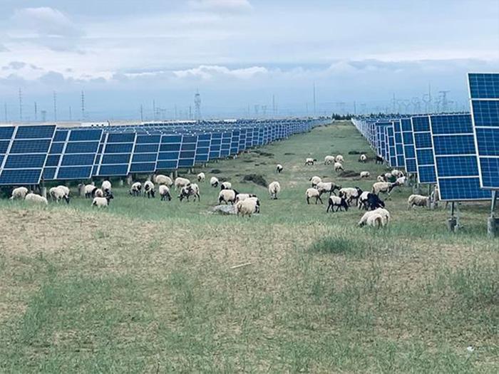 安裝太陽能光伏發電站