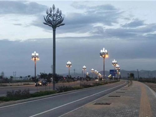 四川中华景观灯