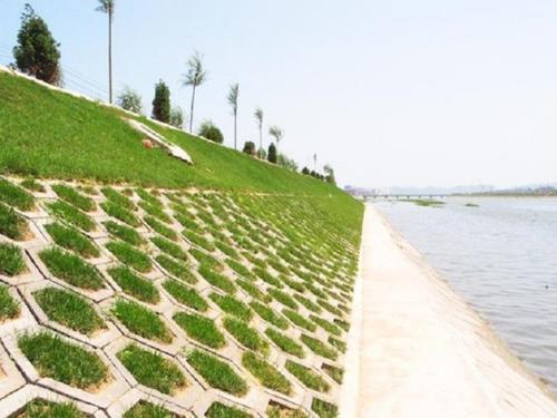 瑞广建设和您分享生态水利工程的基本设计原则