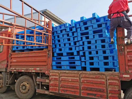 河南塑料托盘厂家