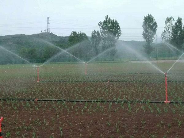 菲特能特为大家分析四川智慧农业的特点和优势