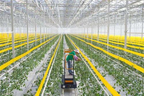 智慧农业的核心技术有哪些?