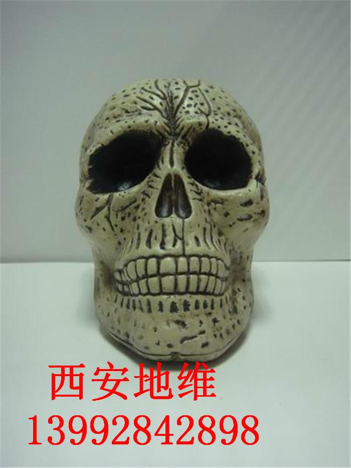 XY004285-大骷髅头-5x48 44