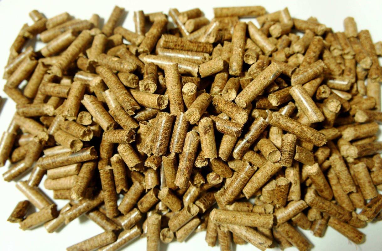 生物质颗粒|甘肃性价比高的生产厂家