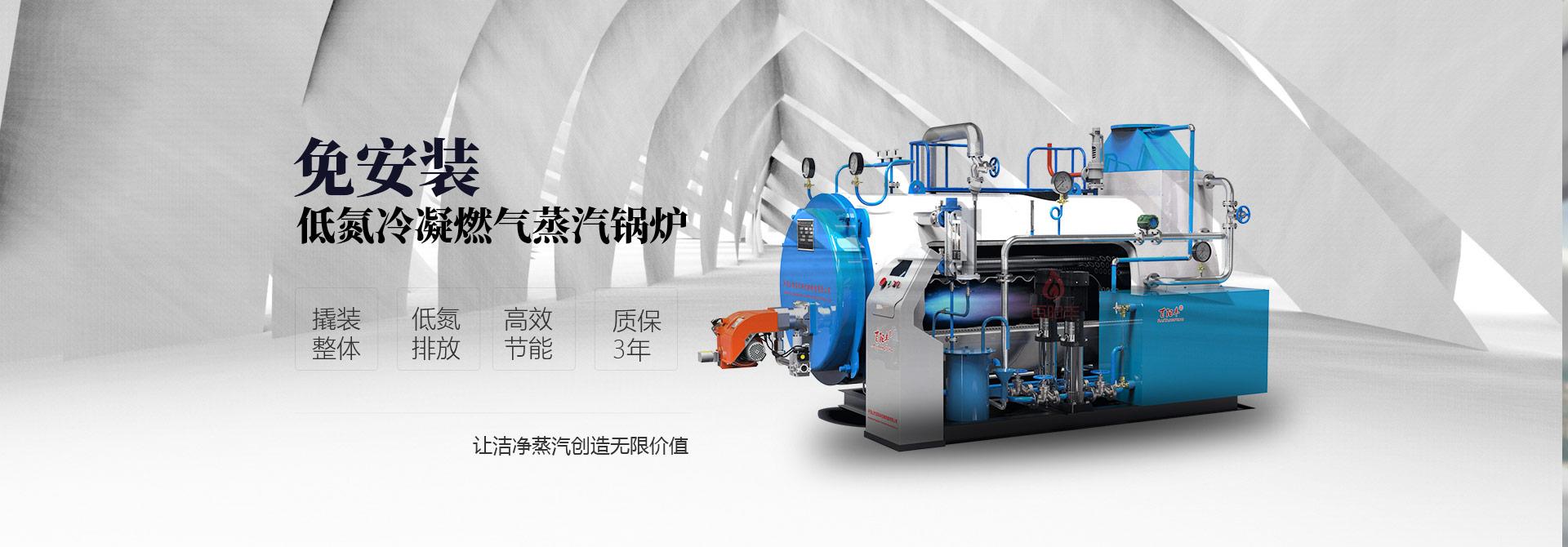 河南蒸汽发生器厂家