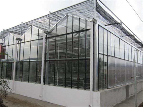 洛阳温室遮阳系统应用案例