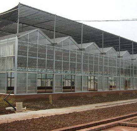 育新温室工程案例