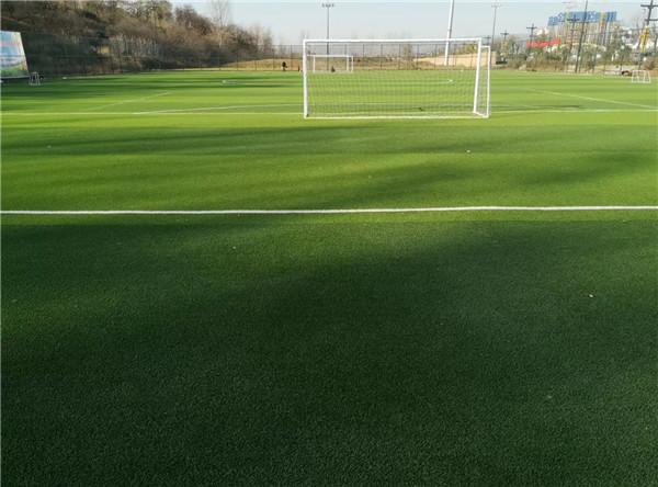西安市新城区育英小学人造草坪足球场