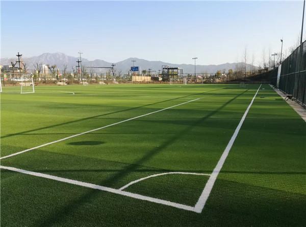 西安市新城区育英小学人造草坪足球场技术好,口碑赞!