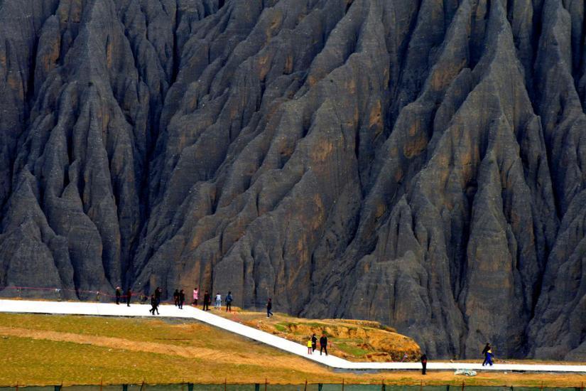 新疆防腐木