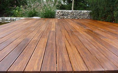 木头的种类那么多,你了解多少呢?