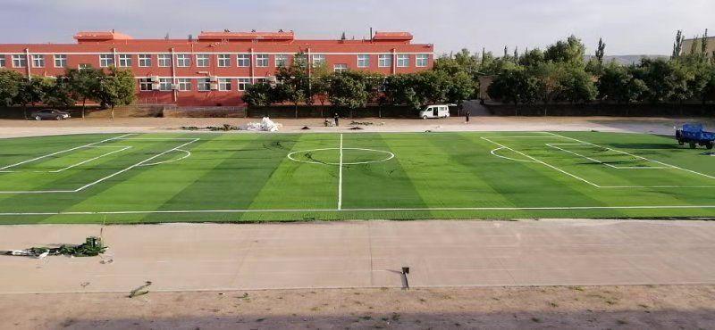 定边县红柳镇中学人造草坪施工案例