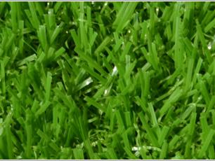 遂宁人造草坪-单丝带径
