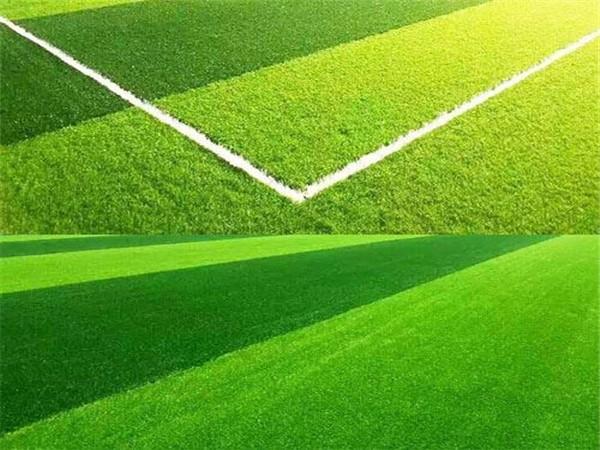 遂宁人造草坪